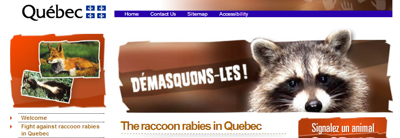 Raccoon rabies Quebec
