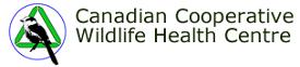ccwhc_logo