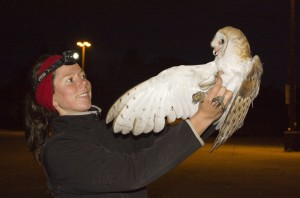 Sofi Hindmarch is studying Canada's threatened Barn Owls.