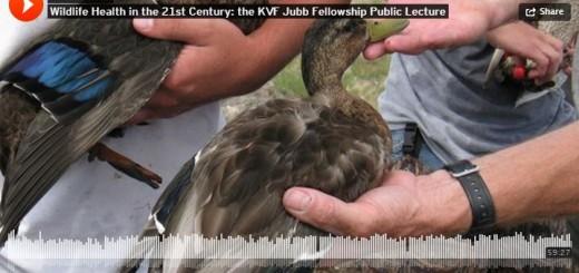 Wildlife Health in the 21st Century